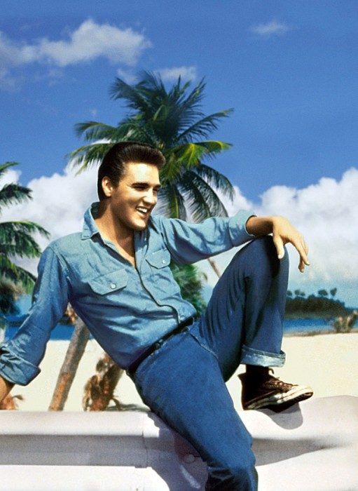 Elvis Presley denim 3