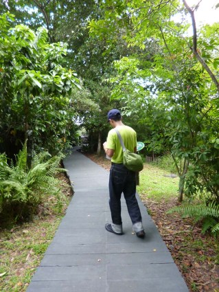 Sungei Buloh Part 2 SD601-00 trekking